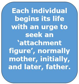 Attachment_urge