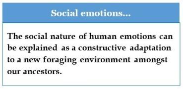 Social-emotions