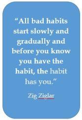 zigs-quote