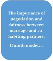 duluth-model-and-fairness