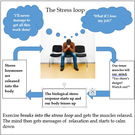 stress-loop