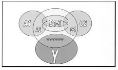 The ABYyyyC model