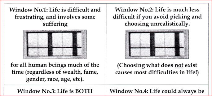 2 windows extracted from 6