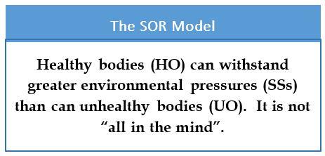 SOR-model3