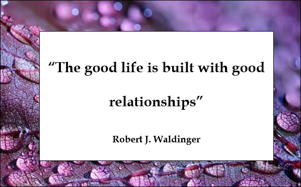 ROBERT-WALDINGER-QUOTE