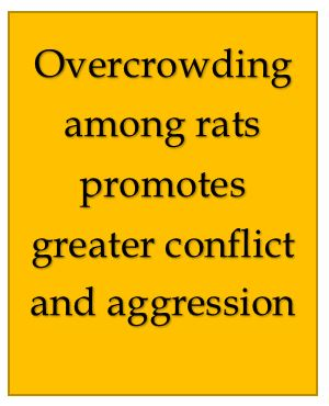 Overcrowing causes conflict and aggression