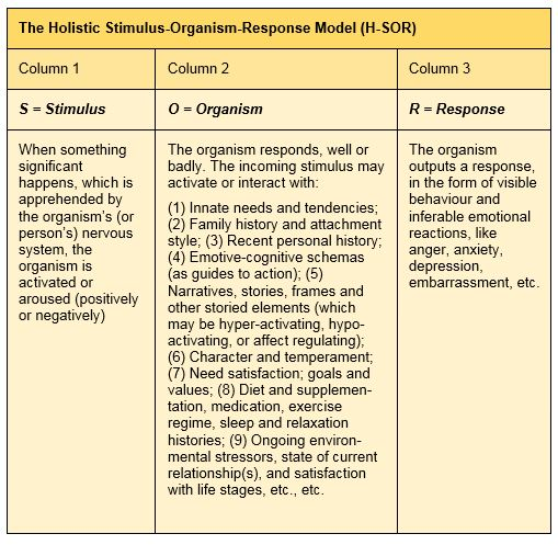 Holistic-SOR-model2
