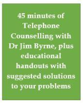 Mini service 45 minutes callout